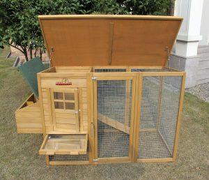 Jeune Poulailler : importance du perchoir à poule | Meilleur Poulailler CD-09